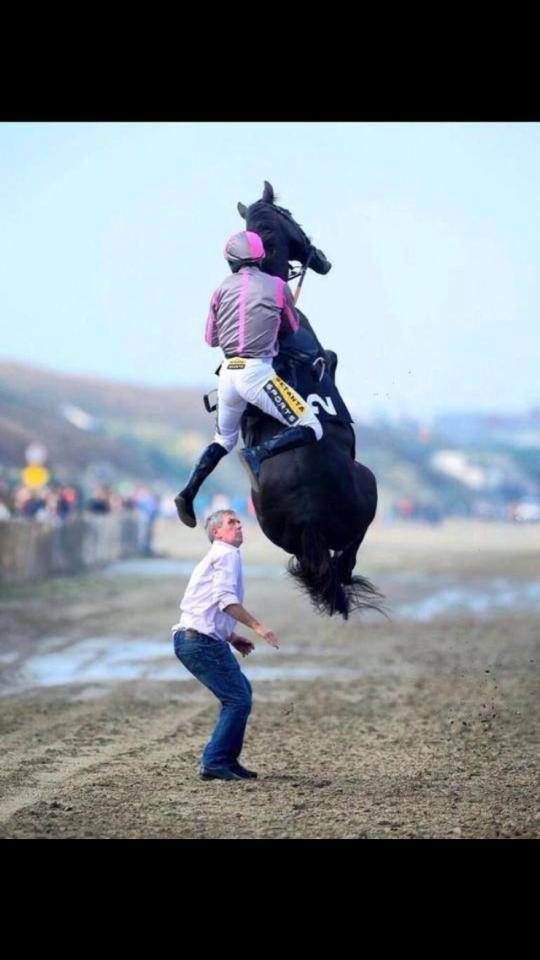 flying horse and jockey
